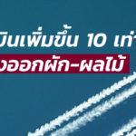 ค่าระวางเครื่องบินเพิ่มขึ้น 10 เท่า กระทบการส่งออกผัก-ผลไม้