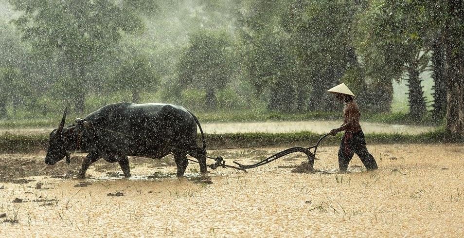 เอกสารที่ต้องเตรียมก่อนลงทะเบียน เยียวยาเกษตรกร