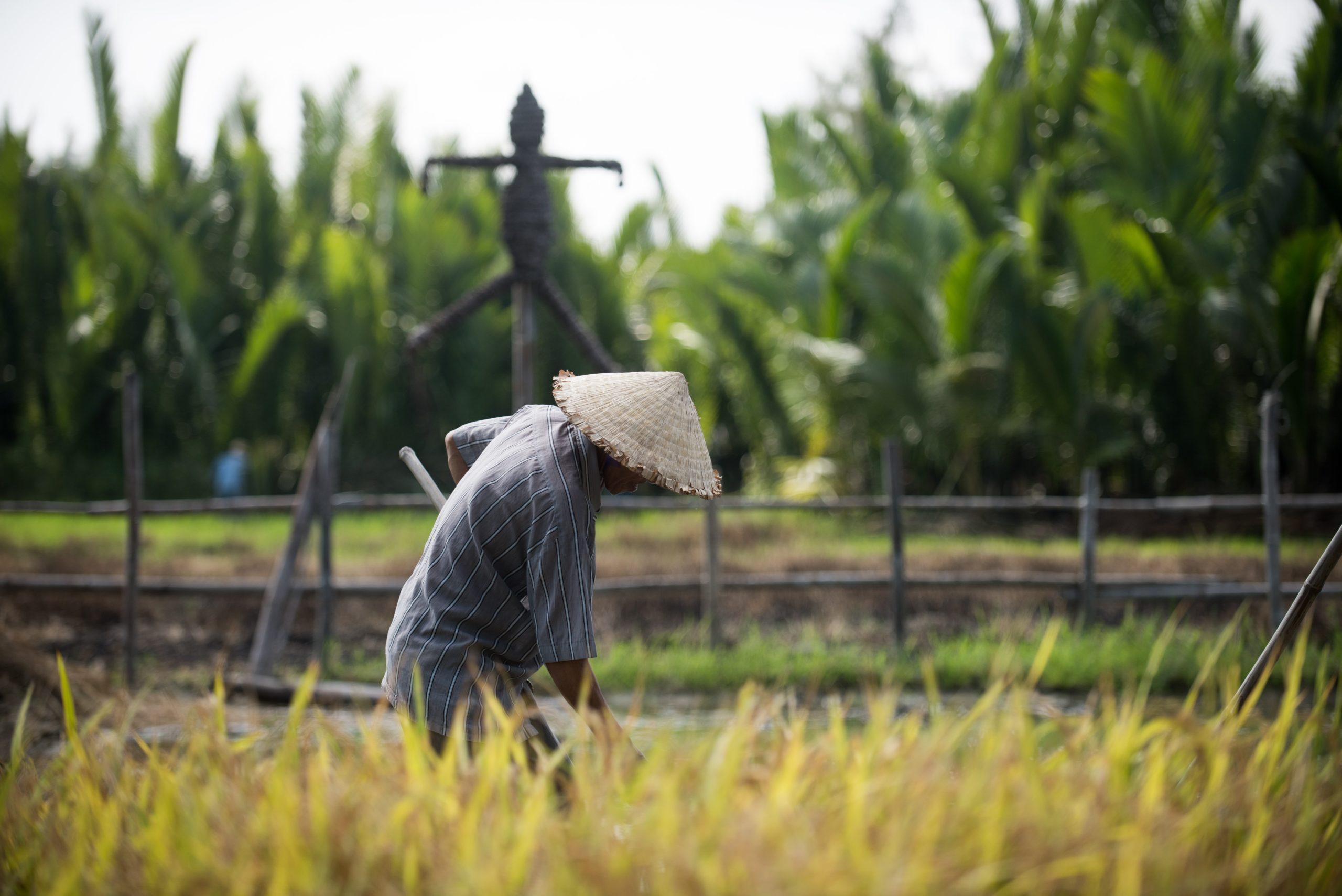 เตรียมรับเงิน 5000 บาท เยียวยาเกษตรกร พรุ่งนี้