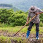 เยียวยาเกษตรกร ผ่านเกณฑ์แล้ว ต้องใช้หลักฐานอะไรเพิ่มเติมหรือไม่