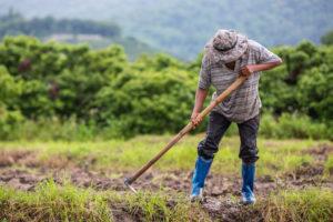 ผ่านเกณฑ์ เยียวยาเกษตรกรแล้ว ต้องเตรียมอะไรเพิ่ม