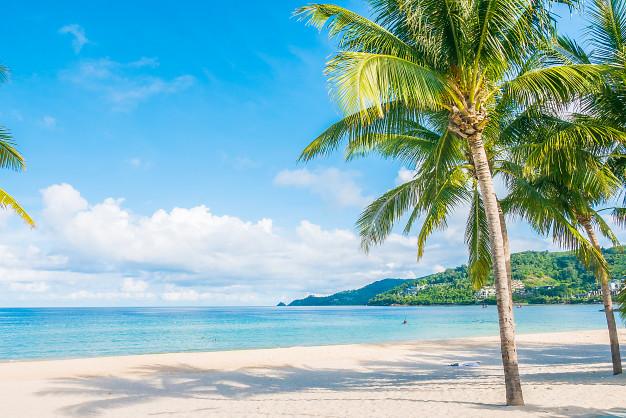 """เตรียมจอง """"เที่ยวปันสุข"""" ที่เกาะเสม็ด ก่อนเปิด 1 กรกฎาคมนี้"""