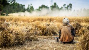โอนเงินเยียวยาเกษตรกรวันละ 1 ล้านราย