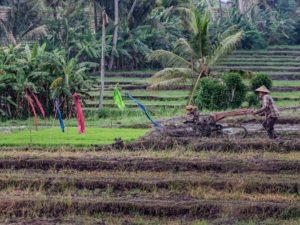 โอนเงินกลุ่มแจ้งบัญชีใหม่ เยียวยาเกษตรกร