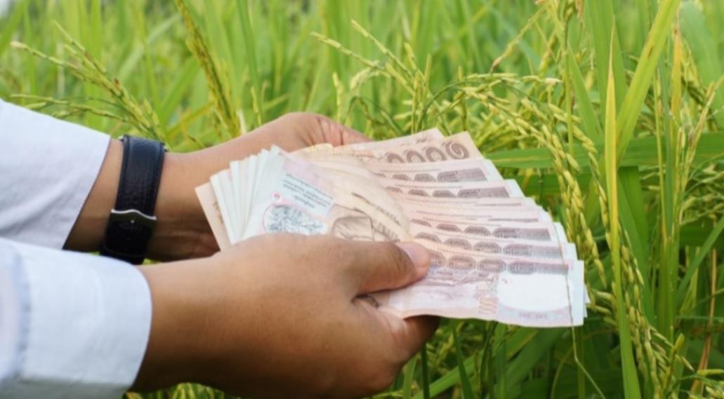 เงินประกันรายได้เกษตรกร โอนเงินงวดที่ 6 วันนี้