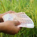 เงินประกันรายได้เกษตรกร ประกันราคาข้าว รอบที่ 1 งวดที่ 10