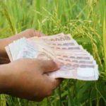 เช็คเงินประกันรายได้เกษตรกร จ่ายส่วนต่าง ประกันราคาข้าว รอบที่ 1 งวดที่ 14